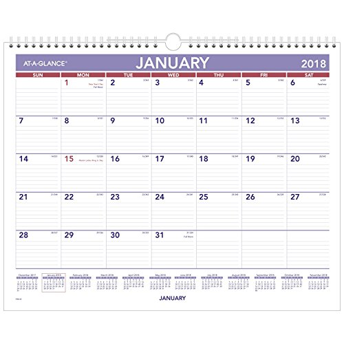 AT-A-GLANCE Monthly Wall Calendar, January 2018 - December 2018, 15