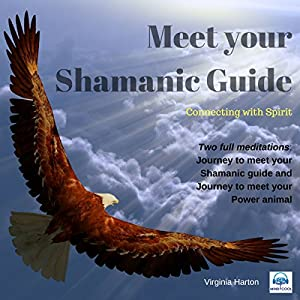 Meet Your Shamanic Guide Speech