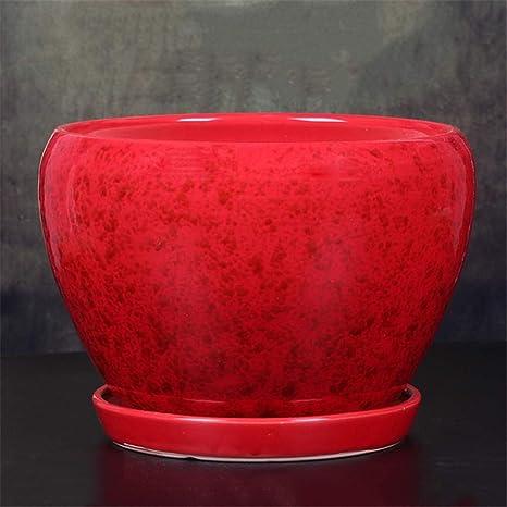 Amazon.com & Amazon.com: Small Red Ceramic Tray Flower Pot Plant Desktop ...