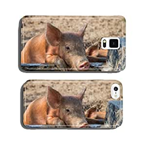 Baby pig drinking water cell phone cover case Samsung S5