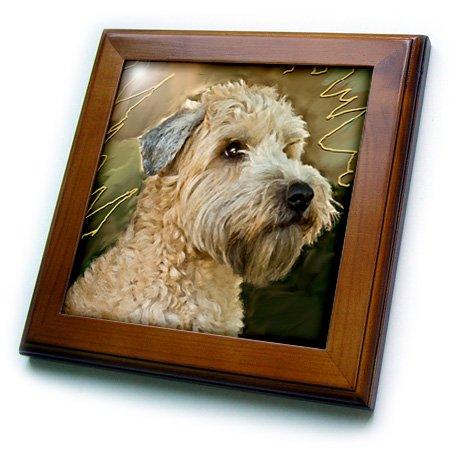 3dRose ft_4808_1 Soft Coated Wheaten Terrier Portrait Framed Tile, 8 by 8