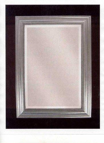 (Uttermost Silver Leaf Stuart Silver Mirror 12005 B)