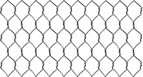 Unbranded Galvanized Steel 20 Ga. Chicken Poultry Wire Fe...