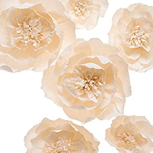 KEY SPRING Paper Flower Decorations, Large Crepe Paper Flowers, Handcrafted Flowers, Giant Paper Flowers (Beige, Set of 6) for Wedding Backdrop, Nursery Wall Decorations, Bridal Shower, Baby Shower 5