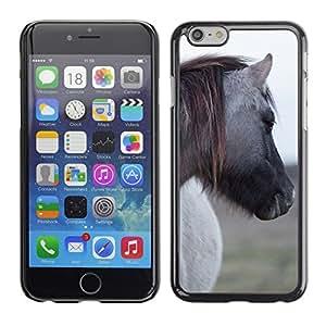 "Print Motif Coque de protection Case Cover // F00003307 Naturschutzgebiet Sachsen // Apple iPhone 6 6S 6G 4.7"""