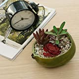 4 Inch Resin Artificial Pomegranate Shaped Succulent Planter Pot, Faux Fruit Accent Bowl, Green