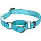 Blueberry Pet 19 Colors Safety Training Martingale Dog Collar, Medium Turquoise, Small, Heavy Duty Nylon Adjustable Collars for Dogs