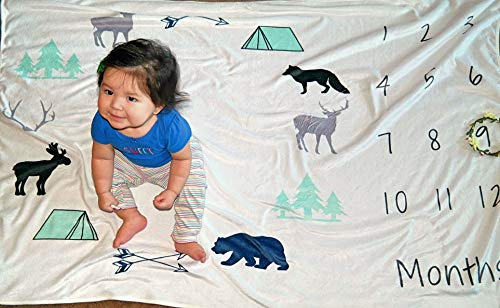 (Monthly Baby Milestone Fleece Blanket for Newborn Girls, Boys and Twins: Huge (60X40) and Plush Photo Prop/Backdrop)