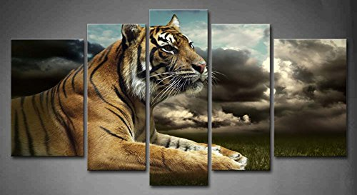 Looking Painting Pictures Decoration Stretched