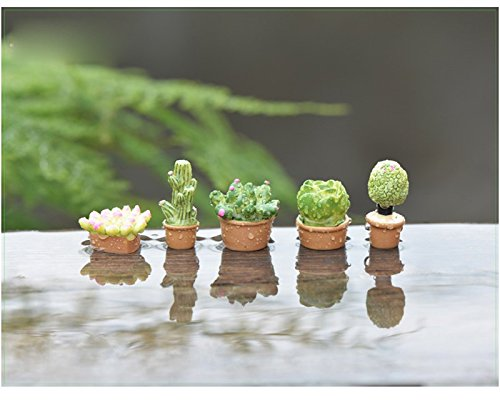 Cheap Resin Succulents Plants 5Pcs/set Doll House Miniatures Lovely Cute Fairy Garden Gnome Moss Terrarium Decor Crafts Bonsai DIY