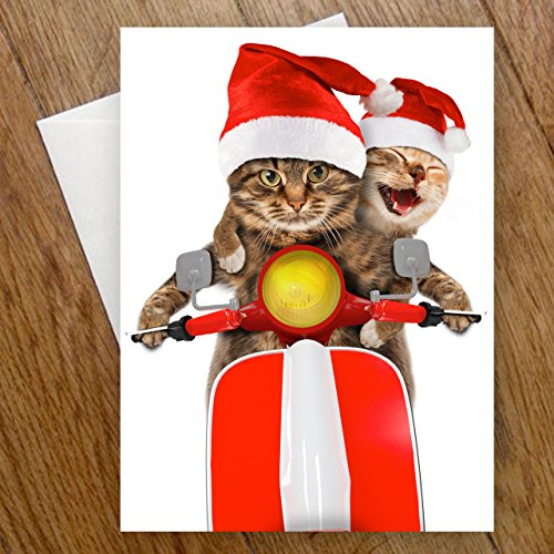 Scooter Cats Holiday Card Pack - Set of 25 cards - 1 design, versed inside with envelopes Photo #5