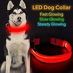 """HiGuard LED Collar de perro, USB recargable brillante collar de mascota noche seguridad LED luz hasta con nailon cincha perfecto para perros pequeños, medianos y grandes, Rojo, Small Collar [11""""-14.6""""inch / 28-37cm ]"""