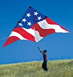 19ft. Patriotic Delta Kite