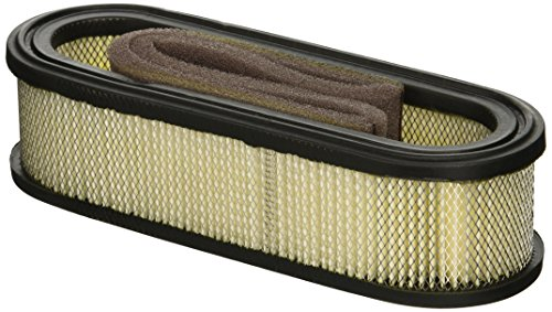 Maxpower 334319 Briggs and Stratton 394019 Air Filter