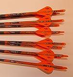 Easton ST Axis N Fused 340 Carbon Arrows w/Blazer Vanes Mossy Oak Wraps 1 Dz.