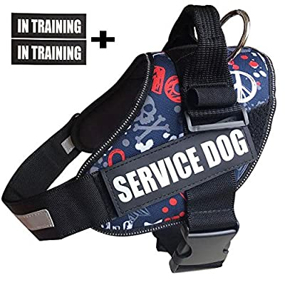 Faylife Service Dog Vest, Punk Style Harness with Reflective Service Dog In Training Patches