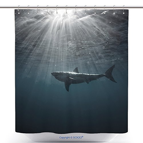 Predator Costume Ebay (Antibacterial Shower Curtains Great White Shark In Blue Ocean Underwater Photography Predator Hunting Near Water Surface 425768155 Polyester Bathroom Shower Curtain Set With Hooks)