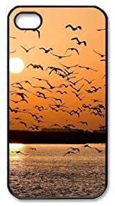 iphone 4 funny case Landscapes sunset seagals PC Black for Apple iPhone 4/4S