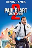 DVD : Paul Blart: Mall Cop 2