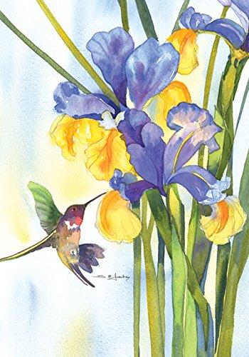 Toland Home Garden Hummingbird and Iris 12.5 x 18 Inch Decorative Colorful Spring Flower Bird Garden (Hummingbird Banner)
