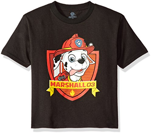 Paw Patrol Little Boys' Toddler Short Sleeve T-Shirt, Black, 3T