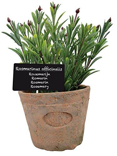Esschert Design Artificial Plant Rosemary