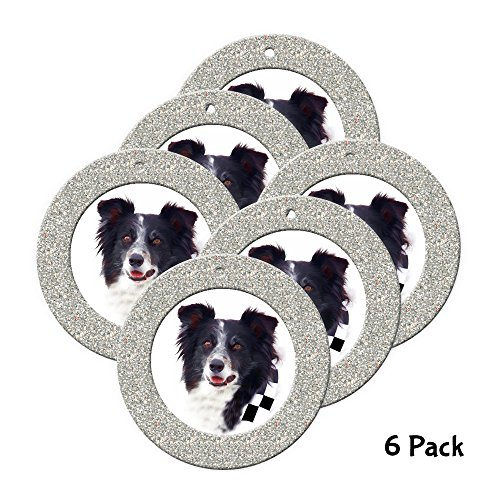 - Expressly Yours! Photo Expressions Mini Magnetic Glitter Christmas Photo Ornaments - 6-pack, Round - Silver
