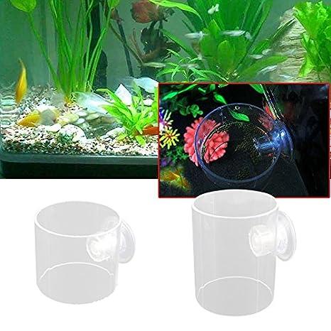 Awhao - Anillo de alimentación para peces, acuario, pecera, alimentador flotante, círculo de alimentos: Amazon.es: Productos para mascotas