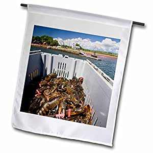 Danita Delimont - Fishing - Prince Edward Island, Victoria. Lobster catch, fishing-CN09 DBR0006 - Dave Bartruff - 18 x 27 inch Garden Flag (fl_72055_2)