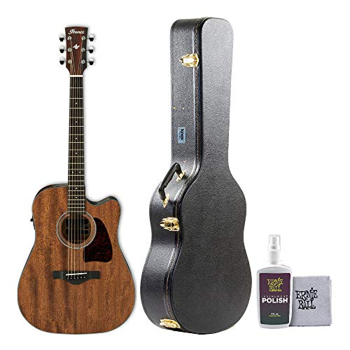 Ibanez Artwood Dreadnought Acoustic Electric Guitar with Knox Protective Case and Polish/Cloth