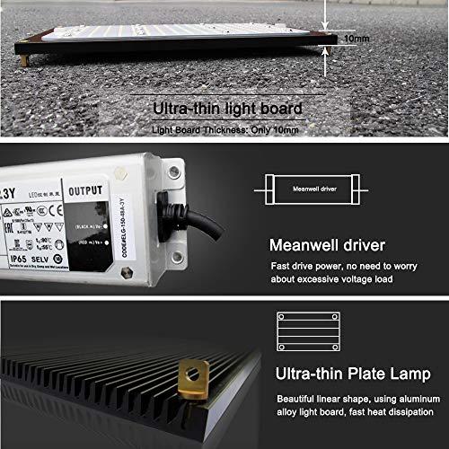 Amazon.com: SUFEMOTEC 120 W LED luz de crecimiento Quantum ...