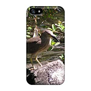 Top Quality Protection Kiwi Bird For Ipod Touch 5 Phone Case Cover