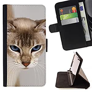 Momo Phone Case / Flip Funda de Cuero Case Cover - Cat Blue Eyes felina gru?ón cara peluda - Huawei Ascend P8 Lite (Not for Normal P8)