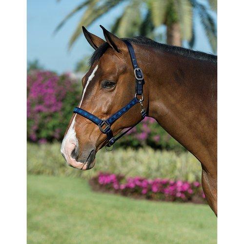 Centaur Argyle Padded Breakaway Halter - Size:Horse Color:Navy