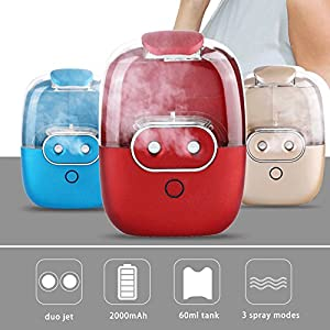 Cool Mist Humidifier ,Portable Facial Spray,Better Mistering with Double Heads , Mounted by Hoop and Silicon Sucking Disc Back Design,Piggy Shape Creative Gift for Her/Him and Deco for Home Office