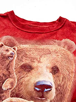 150c8c07 The Mountain Find 10 Brown Bears Child T-Shirt, Red, Small: Amazon ...