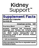 Professional Botanicals Kidney Support - Vegan