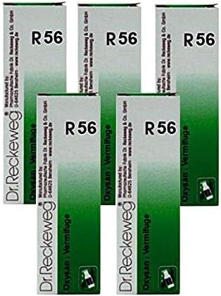 Amazon.com: Dr. Reckeweg Alemania R56 gusanos gotas: Health ...