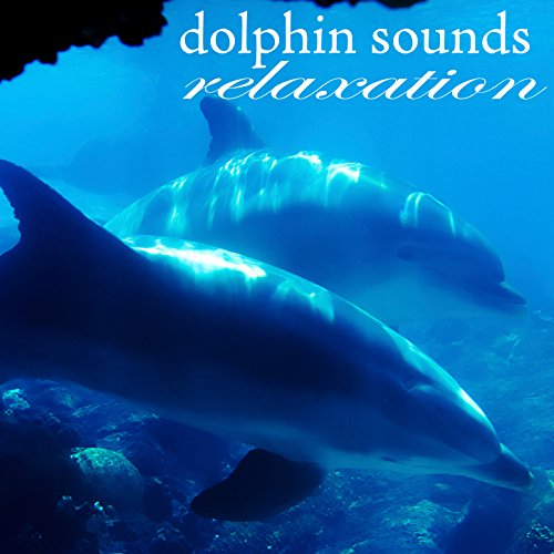 Amazon.com: Dolphins Sounds Relaxation: Sea Nature Players ...