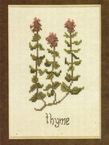 Collectible Graphique Greeting Card/Chart, THYME, Graphique Needle Arts LTD, Designed by Robin McGinn 1982