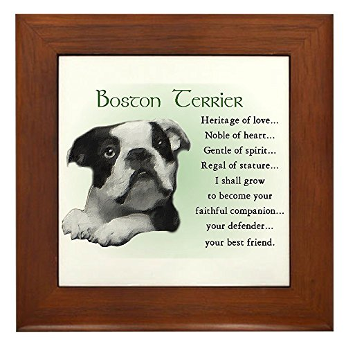 CafePress - Boston Terrier Gifts Framed Tile - Framed Tile, Decorative Tile Wall Hanging -