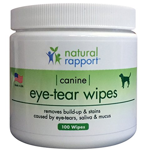 Antibiotic Eye Cream For Dogs - 3
