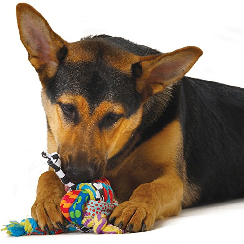 Petstages Rag and Rope Dog Toy, Dog Toy for Tug or Fetch