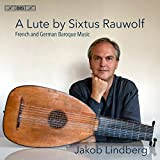 Lute By Sixtus Rauwolf %2F French  and