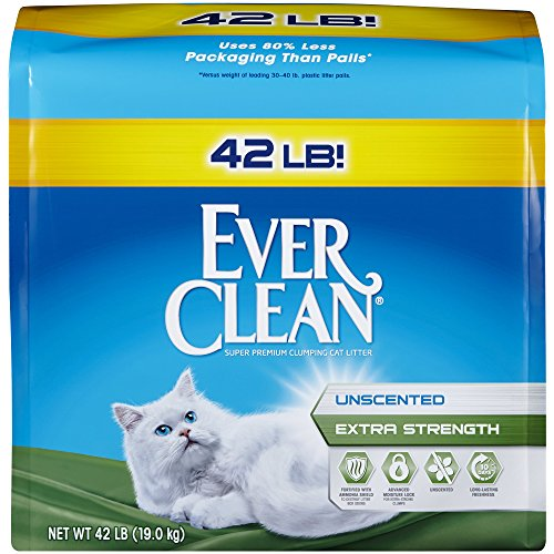 The Best Unscented Clumping Cat Litter  2017 Star Product. Human Resource Free Software. Online Document Signing Free. Faribault Public Schools No Annual Fee Credit. Ebay Credit Card Rewards Expenses Tracker App. Exterior Trash Receptacles Cheaper Than Cable. International Student Car Loan. Lvn To Rn Programs In San Diego. Lake Tech Community College Fake Law Degree