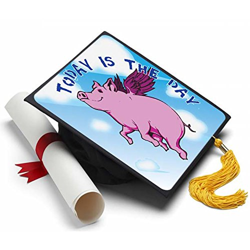 When Pigs Fly Graduation Cap Tassel Topper - Decorated Gr...