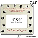 BANBERRY DESIGNS Pet Memorial Picture Frame - 4 X 6 Inch Photograph Opening - You Left Pawprints on My Heart Themed Plaque - Keepsake Frames for The Loss of a Dog or Cat