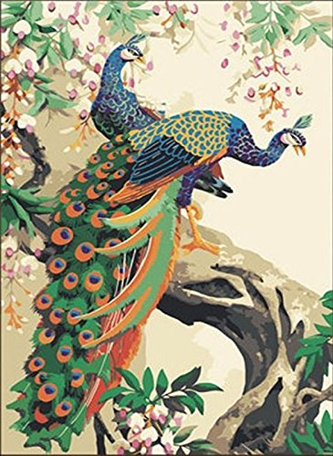 Majestic Peacocks Paint by Number Kit WITH FRAME