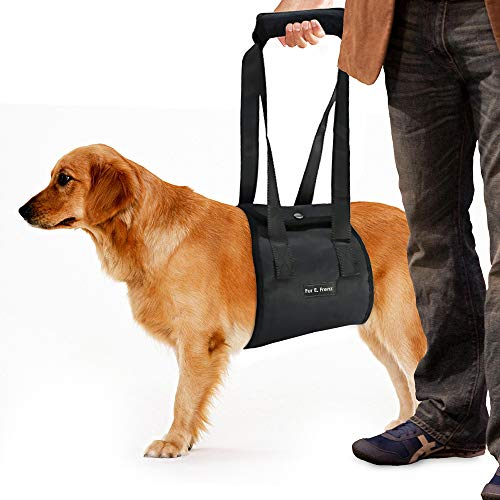 Dog Lift Harness Sling   ACL Brace for Rear Leg Support of XL Old Dogs   Help Em Up Carrier Knee Limping Joint Hock Hip Injuries Arthritis Poor Mobility Veterinarian Approved Rehabilitation Recovery