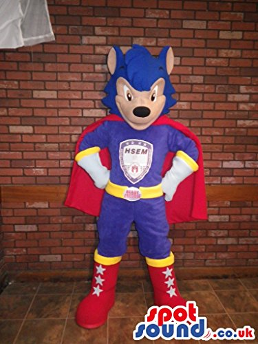 Sonic The Hedgehog Iconic Video Game SPOTSOUND US Mascot Costume In Superhero Clothes (Super Sonic Costume)